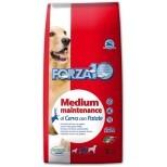 Forza10 Medium Maintenance z jeleniem i ziemniakami 2kg - Termin ważności: PAŹDZIERNIK 2016