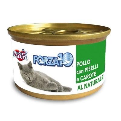 Forza10 Maintenance dla kota
