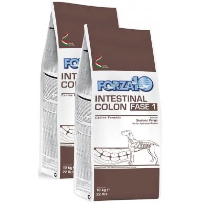 Forza10 Intestinal Colitis Fase I 20kg (2 x 10kg)