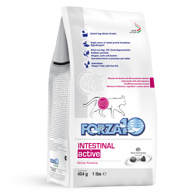 Forza10 Intestinal Active dla kota