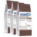 Forza10 Intestinal Colon Fase 1 3x10kg (30kg) dla psa