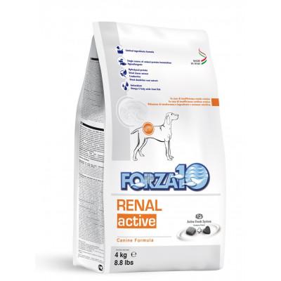 Renal Active 4kg