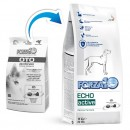 Forza10 Echo Active (OTO) dla psa