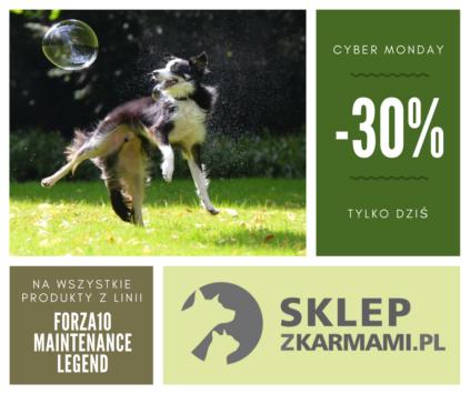 Cyber Monday -30%