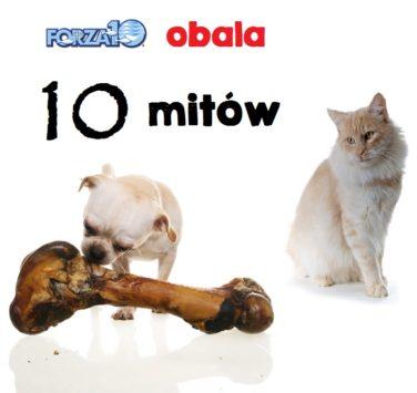 Forza10 obala 10 mitów