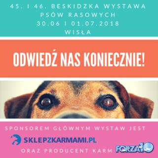 Zapraszamy na wystawy w Wiśle (30.06 i 01.07.2018)